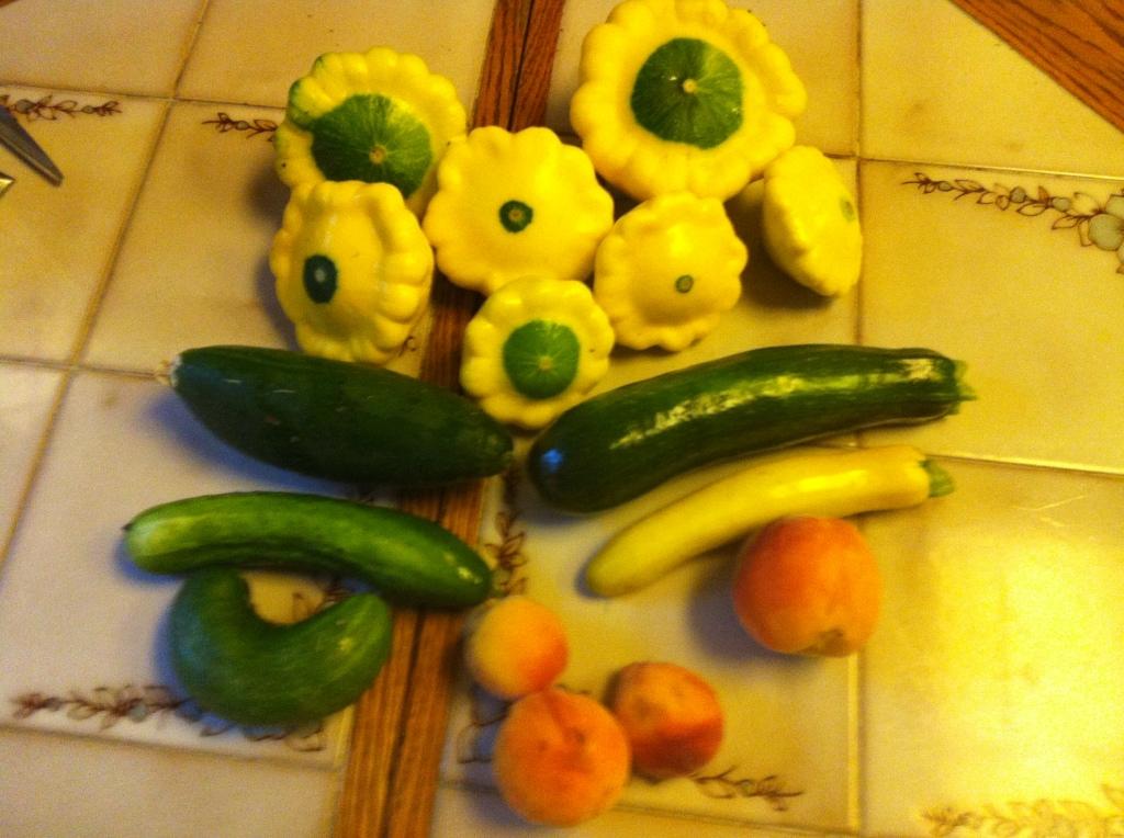 062513 Harvest